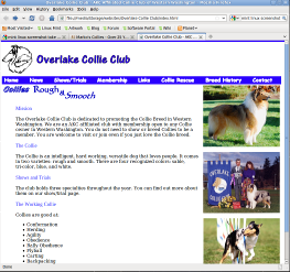 Overlake website